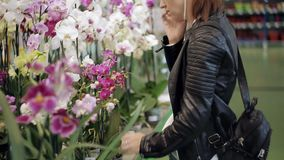 La muchacha en la tienda que se coloca en el contador con las flores en conserva, hablando en el teléfono y elige una flor almacen de video