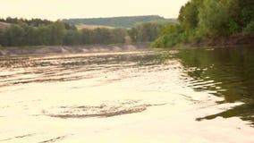 La muchacha en traje de baño se zambulle debajo del agua y ríe el la tarde del verano Estación de la playa Cámara lenta metrajes