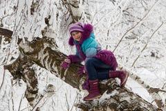 La muchacha en un árbol Fotografía de archivo libre de regalías