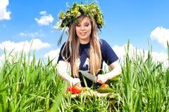 La muchacha en un campo de flores cortó vehículos Fotos de archivo libres de regalías