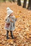 La muchacha en un casquillo y las hojas de otoño que se colocan en otoño parquean por la tarde Foto de archivo