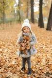 La muchacha en un casquillo y las hojas de otoño que se colocan en otoño parquean por la tarde Imagen de archivo libre de regalías