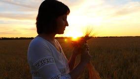 La muchacha en un vestido blanco está sosteniendo un manojo de oídos del trigo en un campo en la puesta del sol almacen de metraje de vídeo