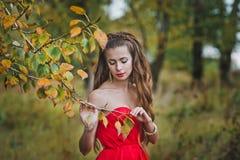 La muchacha en un vestido rojo 1224 Imagen de archivo libre de regalías