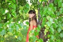 La muchacha en un vestido rojo del abedul se va Imagen de archivo libre de regalías