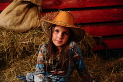 La muchacha en una siega Imagen de archivo