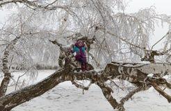 La muchacha entre abedules en la madera del invierno Foto de archivo