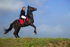 La muchacha entrena al caballo Fotografía de archivo libre de regalías
