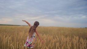 La muchacha es adolescente separado sus brazos como las alas y los paseos a través del campo Cámara lenta almacen de video
