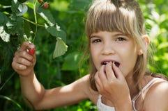La muchacha es eattig a la frambuesa Foto de archivo libre de regalías