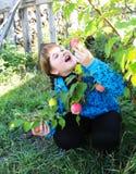 La muchacha escoge la manzana madura del árbol en jardín Fotos de archivo