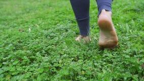 La muchacha está descalzo en la hierba verde almacen de video