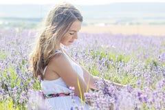 La muchacha está descansando sobre el campo púrpura de la lavanda Fotografía de archivo