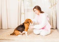 La muchacha está entrenando a su perro Imagen de archivo