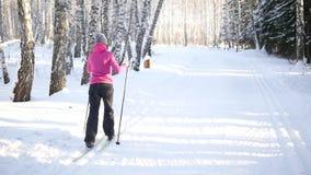 La muchacha está esquiando en el bosque del invierno almacen de video