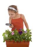 La muchacha está investigando una flor Imágenes de archivo libres de regalías