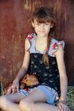 La muchacha está jugando con los cerdos recién nacidos rojos de la raza del Duroc-Jersey El concepto de cuidar y de cuidar para l imagen de archivo libre de regalías