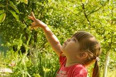 La muchacha está señalando hacia arriba Fotos de archivo