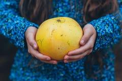 La muchacha está sosteniendo el pomelo Foto de archivo