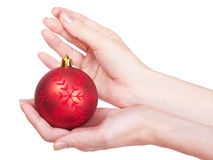La muchacha está sosteniendo la bola roja del Navidad-árbol Fotos de archivo libres de regalías