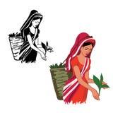 La muchacha está trabajando en el té de la producción
