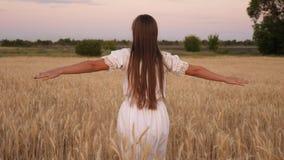 La muchacha feliz camina a través de un campo del trigo amarillo y toca los oídos del trigo con sus propias manos C?mara lenta Ch metrajes
