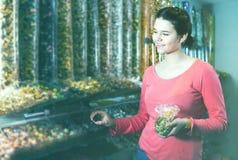La muchacha feliz está eligiendo los caramelos Fotografía de archivo libre de regalías