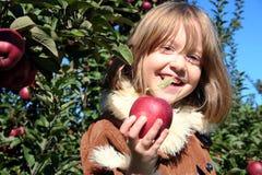 La muchacha feliz ofrece la manzana fresca Imagen de archivo libre de regalías