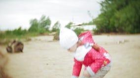 La muchacha feliz y hermosa está alimentando gaviotas en la playa en la orilla del río almacen de video