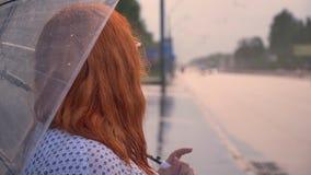 La muchacha gorda del jengibre con los vidrios se está colocando en tiempo lluvioso en la parada de autobús, coches de observació metrajes