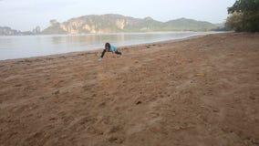 La muchacha hace la gimnasia en la playa en el amanecer