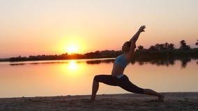 La muchacha hace yoga en la puesta del sol y hay un perro metrajes