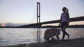 La muchacha hermosa camina con un perro a lo largo del río almacen de metraje de vídeo