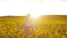 La muchacha hermosa camina en el campo de flores en la puesta del sol almacen de metraje de vídeo