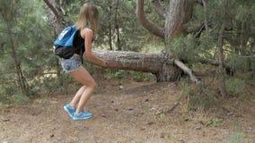 La muchacha hermosa camina a través del bosque almacen de metraje de vídeo