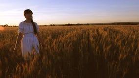 La muchacha hermosa camina a través del campo con trigo amarillo y toca los oídos del trigo con sus propias manos C?mara lenta metrajes