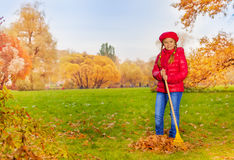 La muchacha hermosa con el rastrillo limpia la hierba de las hojas Foto de archivo libre de regalías