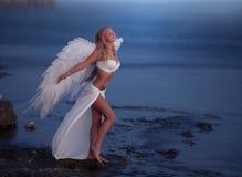 La muchacha hermosa con las alas Fotografía de archivo libre de regalías