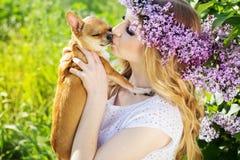 La muchacha hermosa con las flores de la lila está besando el perro del chuhuahua Imágenes de archivo libres de regalías