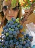 La muchacha hermosa con las gafas de sol escogió las uvas Fotos de archivo