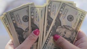 La muchacha hermosa con los clavos rosados, controles las denominaciones a los 20 dólares en sus manos y las cuenta, 4k , 3840x21 metrajes