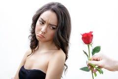 La muchacha hermosa del trastorno recibe una rosa del rojo Ella está mirando sobre su hombro y abadejos Fotos de archivo libres de regalías