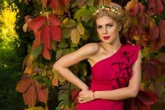 La muchacha hermosa en el vestido rojo que presenta en un fondo se va Fotografía de archivo libre de regalías