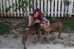 La muchacha hermosa joven con el pelo largo juega con los perros Fotografía de archivo libre de regalías