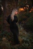 La muchacha hermosa joven en un vestido negro se coloca en la madera cerca de un árbol grande en una corriente en la puesta del s Imagenes de archivo