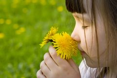 La muchacha huele las flores Imagen de archivo