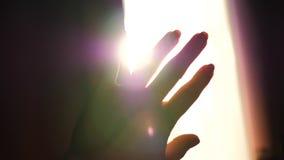 La muchacha juega con sus manos en la luz del sol Primer de la mano almacen de video