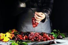 La muchacha lava las uvas Foto de archivo libre de regalías