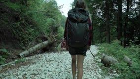 La muchacha linda joven da vuelta alrededor y alza del rato de la sonrisa por la pista blanca de los guijarros en el bosque del v almacen de metraje de vídeo