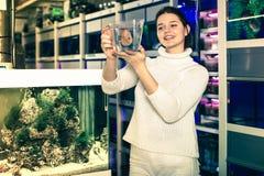 La muchacha mantiene pescados tropicales grandes envase de plástico Imagenes de archivo